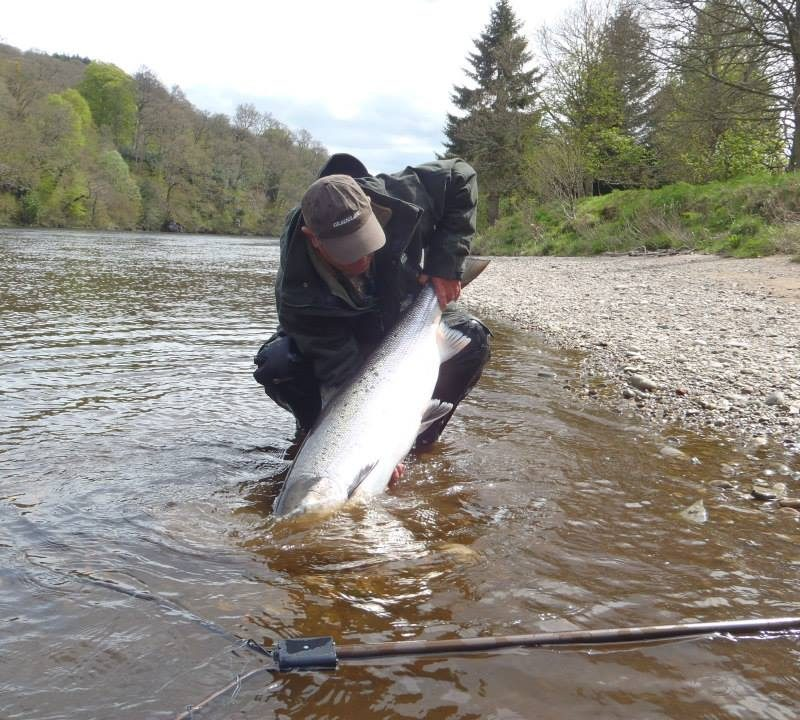 Salmon Fishing